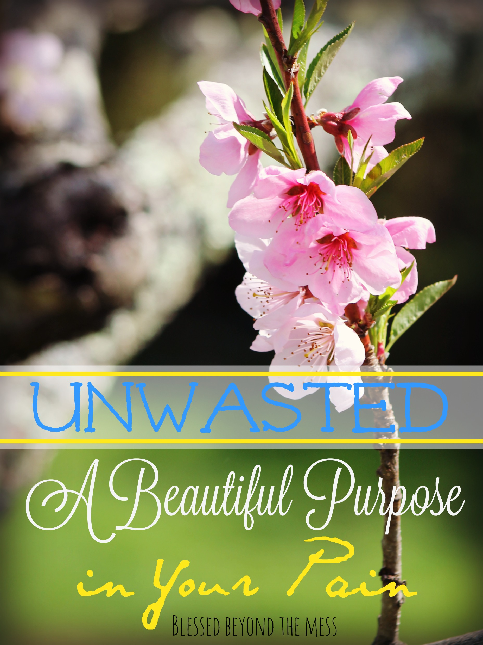 Beautiful Purpose
