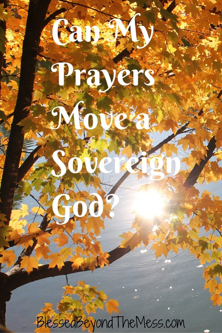 Can My Prayers Move a Sovereign God-