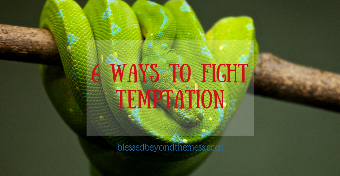 6 Ways to Fight Temptation: We all have to fight temptation many times during our lives. Sheer will power alone is not enough to secure victory over sin. Use these Scriptures and prayers as you strive to overcome.