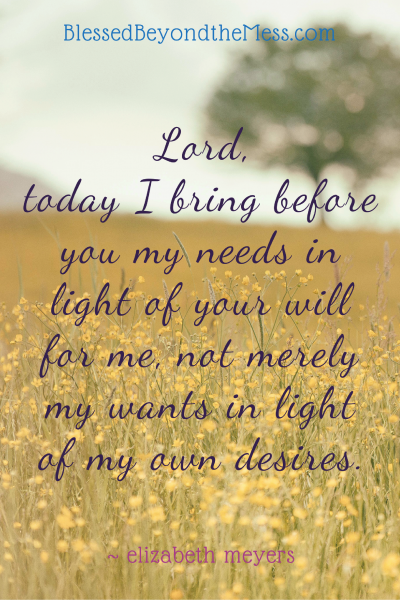 Lord, today I bring before you my needs in light of your will for me, not merely my wants in light of my own desires. ~elizabeth meyers