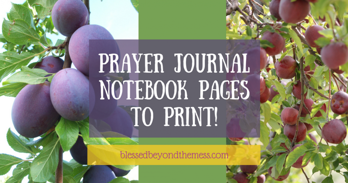 Print these supplementary pages to add to your Prayer Journal Notebook!